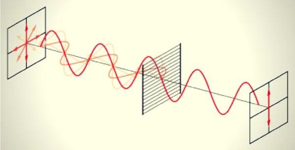 Eine Erklärung zur Funktionsweise von Polfiltern. Der Polfilter wirkt wie eine Wand aus Gitterstäben, die das Licht nach Polarisation filtert.